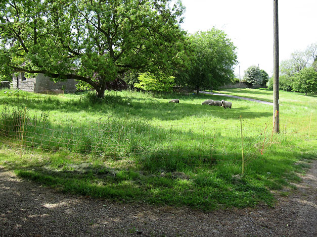 West Littleton Common May 2015